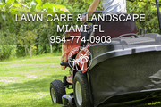 Miami Landscaping Companies - We are not all the same