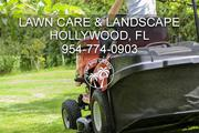 Hollywood Lawn Care Services and Landscaping Companies
